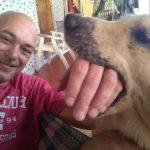 amigo de cachorros